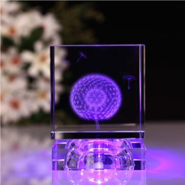 水晶球女生3D植物蒲公英标本创意实用生日礼品送闺蜜同学刻字定制